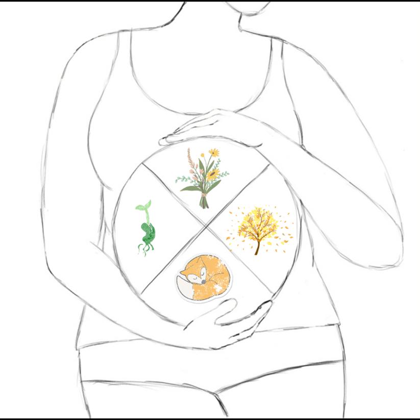 zyklisch Leben - Familiengarten - innere Jahreszeiten