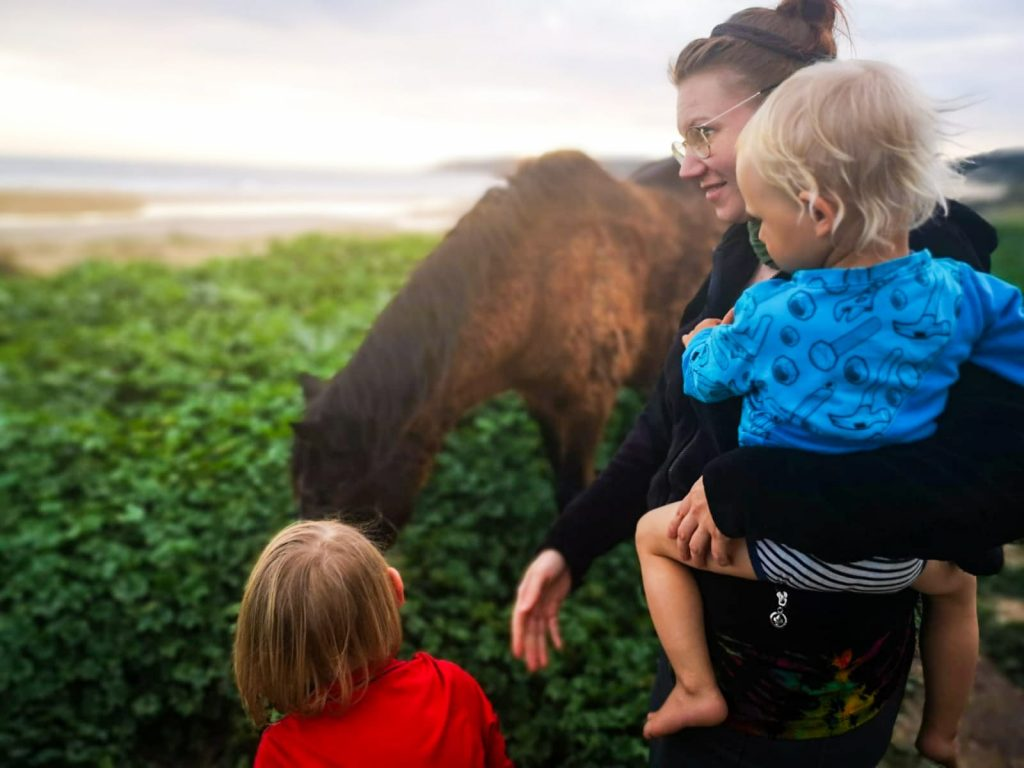 vanlife Geschichten - Norse Family im Interview - Familiengarten